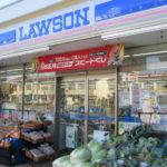 ローソン新城庭野店 入口に迫ってくるハクサイ